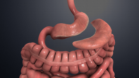 gastric bypass cost, gastric bypass surgery, gastric bypass surgery cost, gastric bypass surgery price